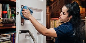 detailed-cleaning-6-panel-door